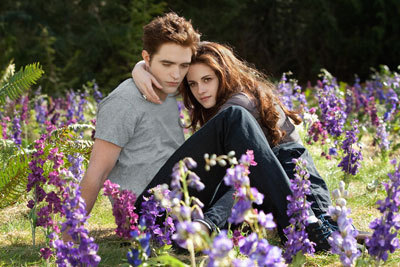 Edward and Bella in their meadow