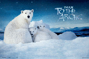 Imax: To the Arctic DVD + Blu-ray Review