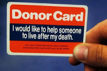 Signing Up for Organ Donation