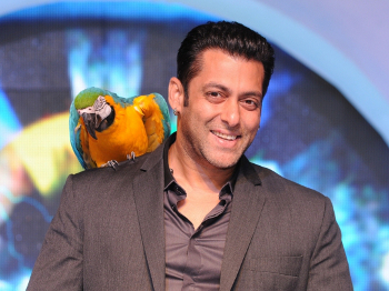 Salman Khan is a Bollywood Bad Boy