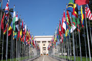 Preview united nations day pre