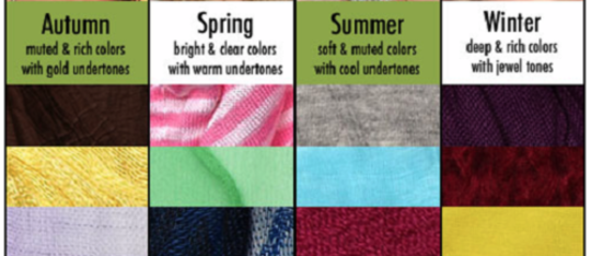 Feature your best color by season feature