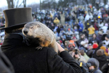 Groundhog Day is a big deal - look at the people!