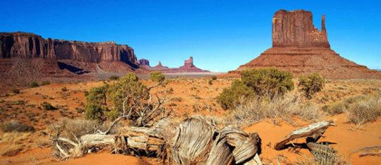 Feature biome desert feat