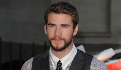 Liam stars as Gale in The Hunger Games