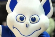 Preview billiken preview