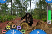 Preview disneynature explore app pre