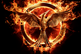 Micro_the-hinger-games-mockingjay-micro