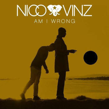 Am I Wrong is the perfect summer song