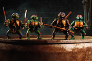 TURTLE POWER: Exclusive Images