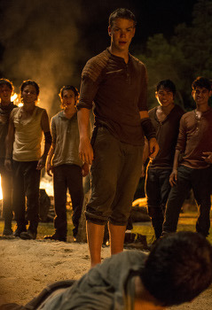 Gally (Will Poulter) challenges Thomas (Dylan O'Brien) to a fight