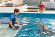 EXCLUSIVE Dolphin Tale 2 Interview: Nathan and Austin