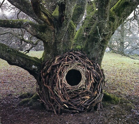 Goldsworthy's art interacts with the surrounding environment.