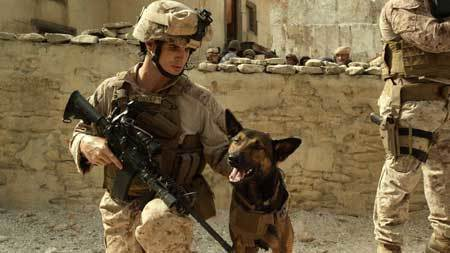 Max on duty in Afghanistan