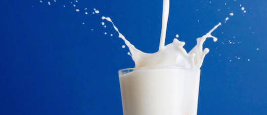 Kidzworld looks in to whether or not milk is really good for your health.