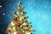 Kidzworld learns all about the history of the Christmas tree.