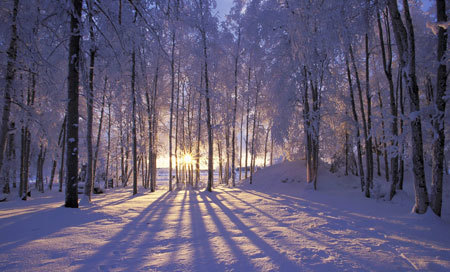 Winter Solstice scenery