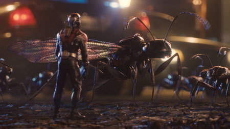 Ant-Man checks out his ant army