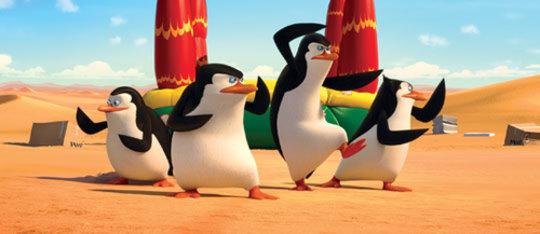 Feature penguins madagascar feat