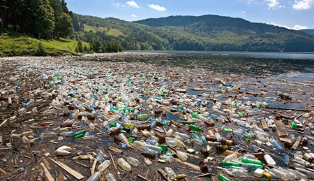 Plastic bottles are polluting the environment