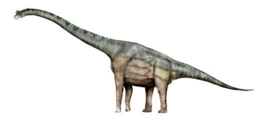 Feature brachiosaurus feat