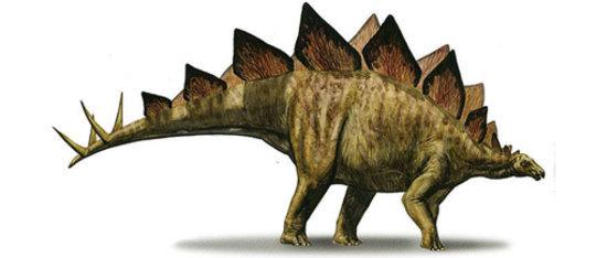 Feature stegosaur feat