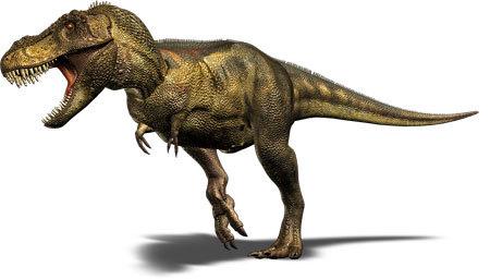 Tyrannosaurus Rex have tiny arms!!