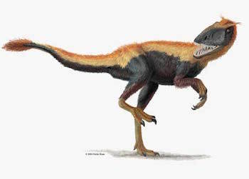 Did you know that most dinosaurs were likely feathered?