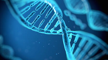 DNA is a molecule found in every cell of our bodies!