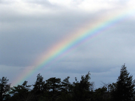 Rainbows form when light retracts through water