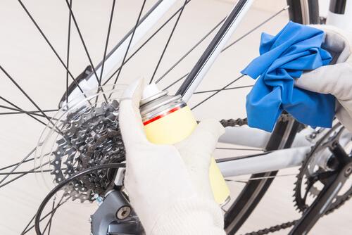 bike maintenance the chain