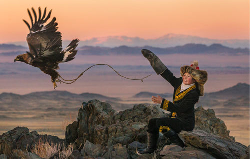 Aisholpan launches her eagle for the hunt