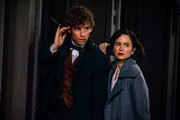 The Stars of Fantastic Beasts and Where to Find Them