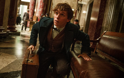 Is that an escaped fantastic beast?