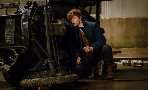 Newt hopes his beasts aren't the cause of destruction