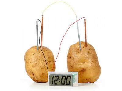 How Potato Batteries Work