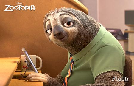 Flash the sloth