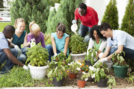 Some people find gardening reduces stress.