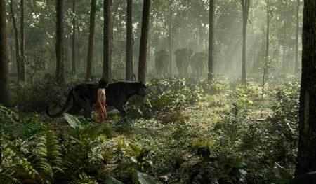 Mowgli in the jungle