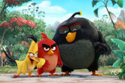 Angry Birds Movie Review