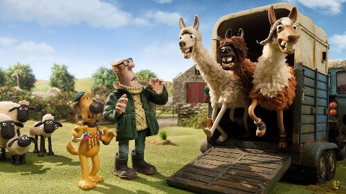 The llamas arrive at the farm