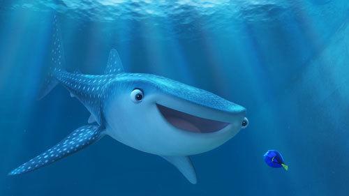 Destiny the whale shark greets Dory