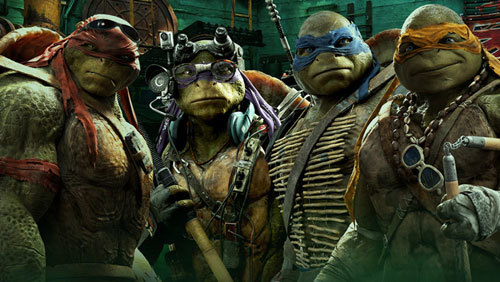 Turtles ready to rumble
