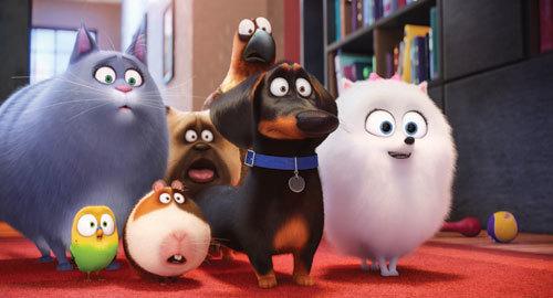 Chloe, Sweetpea, Norman, Mel, Buddy, Tiberius and Gidget