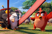 Angry Birds Exclusive Clip | Meet The Birds - Sean Penn as Terence
