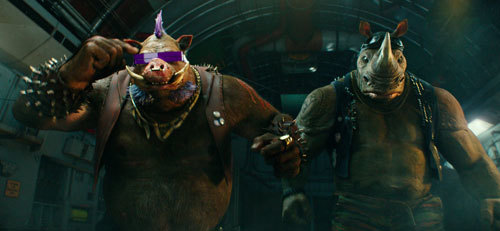 Bebop and Rocksteady aren't the brightest bulbs