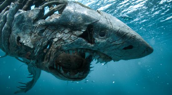 Ghost shark attacks!
