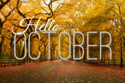 Preview hello october pre