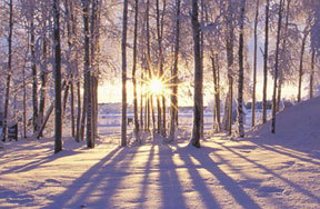 All About Winter Solstice