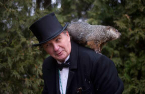 Preview groundhog day facts pre